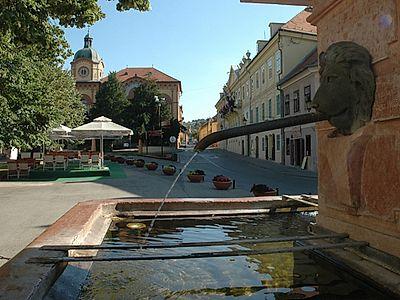 Fruska Gora Monasteries and Sremski Karlovci Private Tour