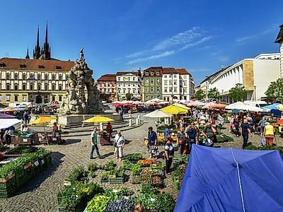 Brno Highlights Private Walking Tour