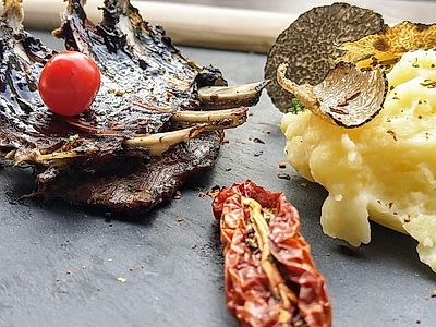 Upgrade to Vienna by Private Transfer with Truffle Adventure - Hunting and Culinary Experience
