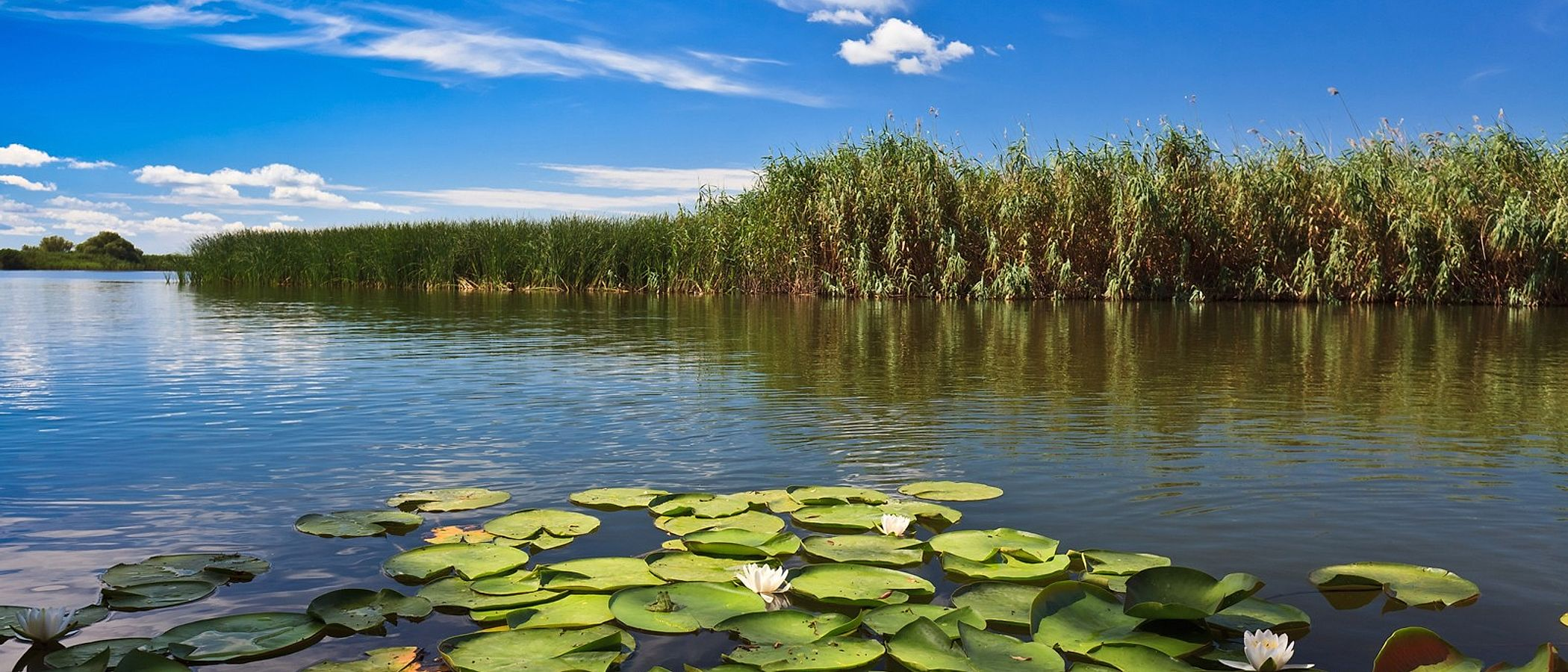 Danube Delta travel packages
