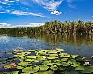 2 Nights in Danube Delta