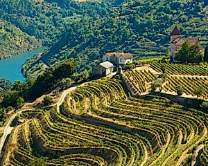 1 Night in Douro Valley