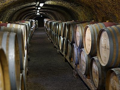 Eger Wine and Food Private Walking Tour