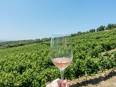 Minoan Paths for Wine Enthusiasts Private Tour