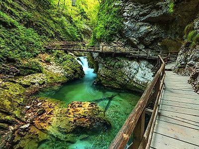 Bled, Vintgar Gorge and Bohinj Private Day Trip
