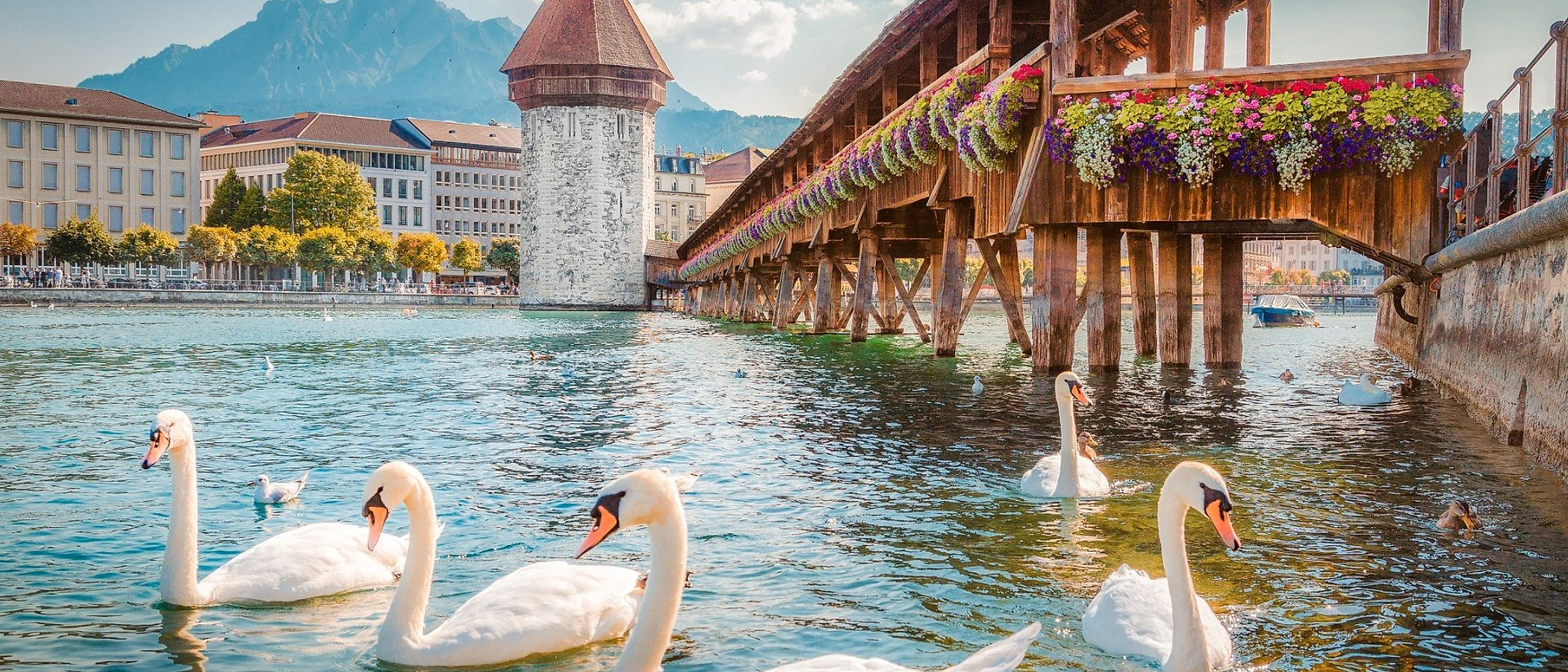 Lucerne travel packages