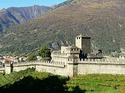 Bellinzona Three Castles Private Half Day Hike