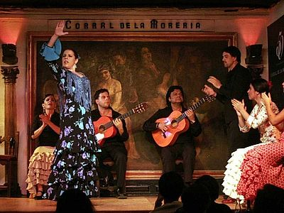 Dinner and Flamenco Show Experience