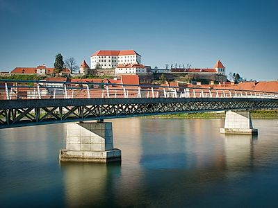 Ptuj Half-Day Private Tour