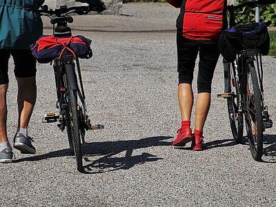 Explore Mljet National Park by Bike