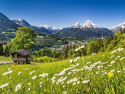 Bavarian Alps Private Hiking Tour
