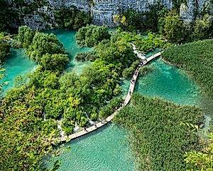 1 Night in Plitvice