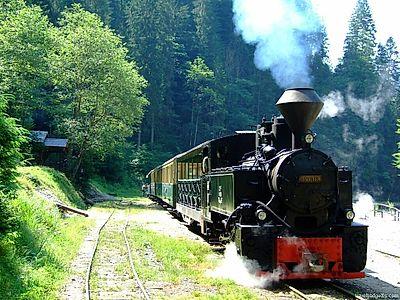 Maramures Mountains Steam Train Ride