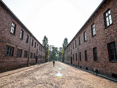Upgrade to Krakow By Private Transfer with a Stop in Auschwitz